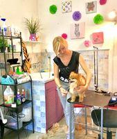 Салон красоты для кошек и собак в Долгопрудном