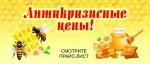"""""""Здоровый город"""" мед, продукты пчеловодства"""